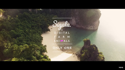 Sigala , Digital Farm Animals - Only One