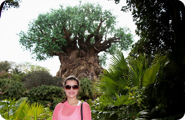 Disney´s Animal Kingdom The Tree of Life - A Árvore da Vida