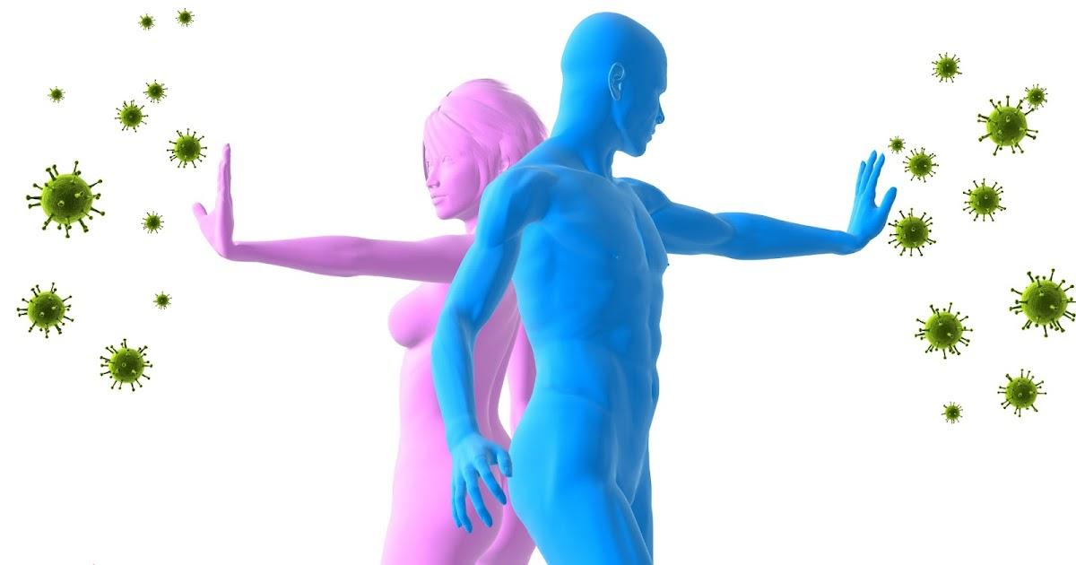 sistem kekebalan tubuh