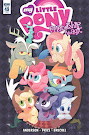 MLP Friendship is Magic #49 Comic Cover Retailer Incentive Variant