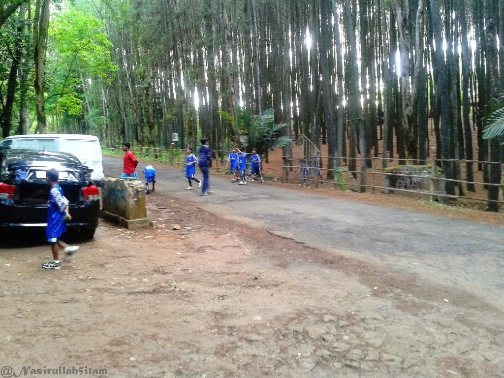 Gerombolan anak SSB Muntuk sedang latihan fisik di Hutan Pinus