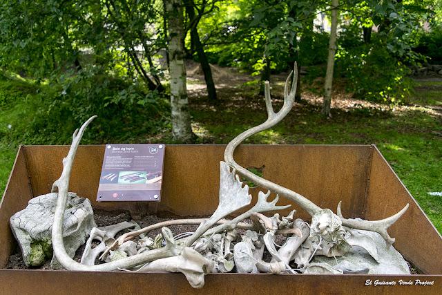 Jardín Vikingo en el Jardin Botánico de Toyen - Oslo por El Guisante Verde Project