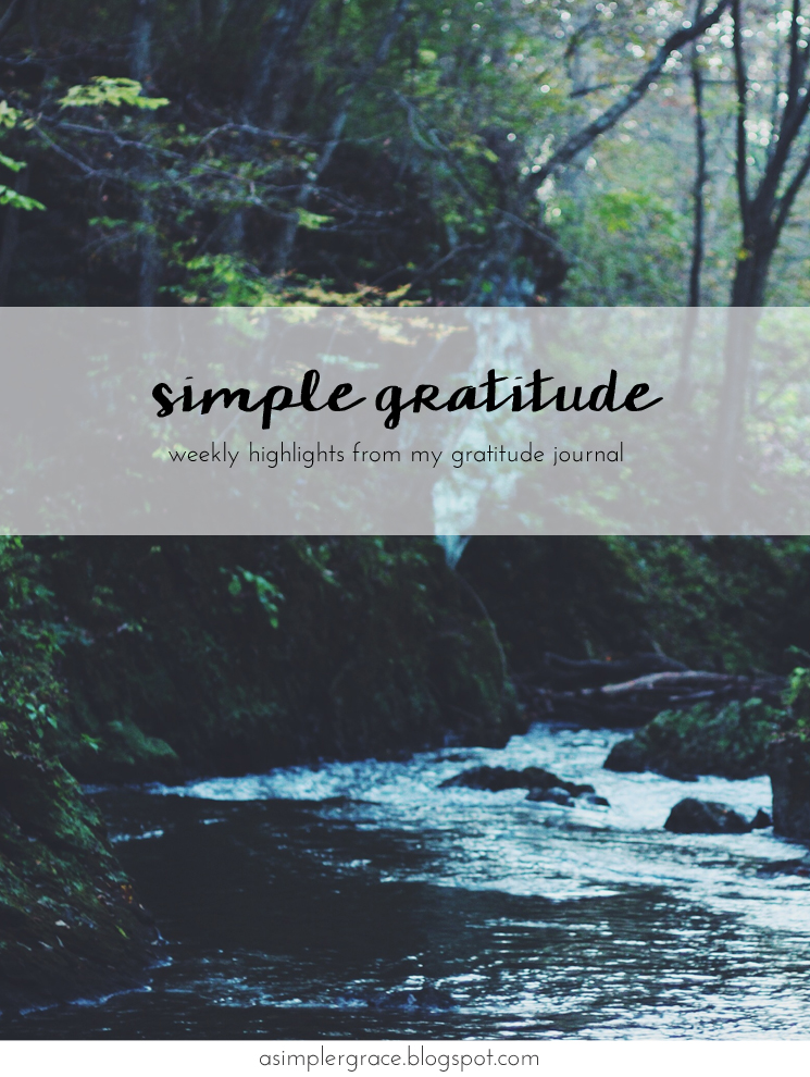 Sharing my #gratefulheart on the blog with @embergreyblog - Simple Gratitude | 53 - A Simpler Grace