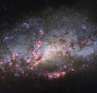 Spiral Galaxy NGC 4490