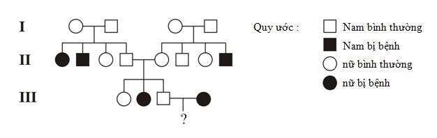 Sơ đồ phả hệ trên mô tả sự di truyền của một bệnh ở người do một trong hai  alen của một gen quy định. Biết rằng không xảy ra đột biến ...