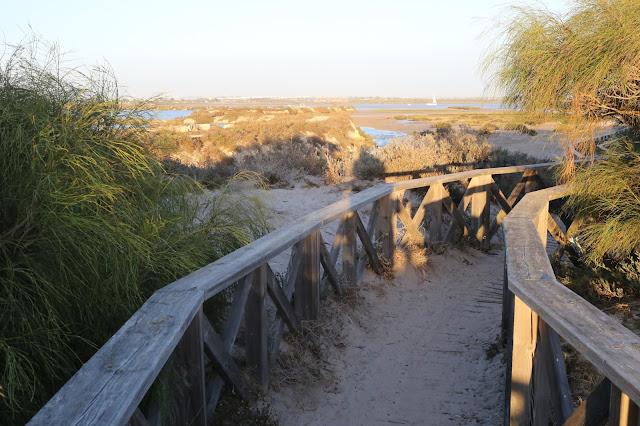 Camino hacia la playa del Boquerón