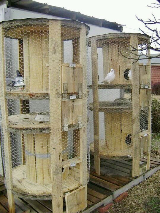 How to repurpose a wire spool as a chicken or bird coop