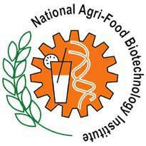 National Agri-Food Biotechnology Institute Recruitment 2017 for Junior Research Fellow Posts
