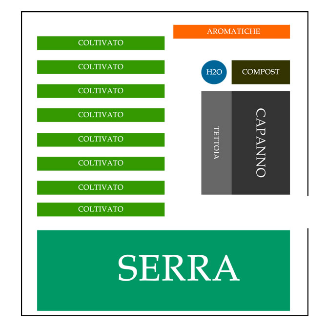 schema organizzativo piante orto