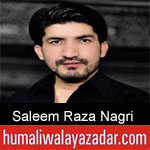 https://www.humaliwalyazadar.com/2018/10/saleem-raza-nagri-nohay-2019.html