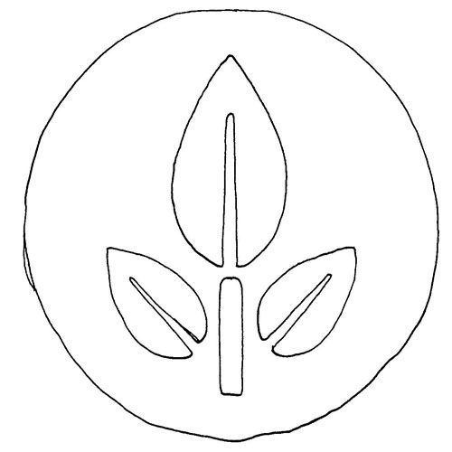 A Talent For Raw: Designing Eve's Life Logo