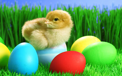 easter pictures bfm0cnww%2Bcopy - Happy Easter 2017 Greetings   pictures   images