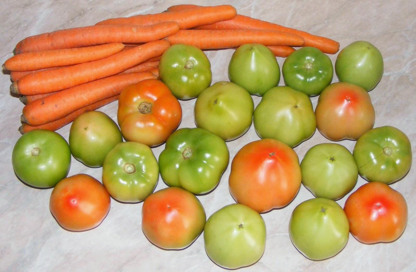 morcovi, morcov, gogonele rosii verzi, gogonea, legume, legume pentru muraturi, ingrediente muraturi, legume pentru murat, retete de muraturi, retete muraturi, retete pentru iarna, retete muraturi in otet, retete culinare, legume romanesti proaspete, muraturi ingrediente,