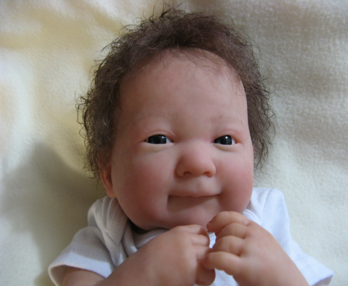 Adopted Reborn Baby Dolls 2017