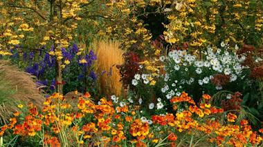 Foto del día. Bordura inglesa de otoño en Pettifers Garden