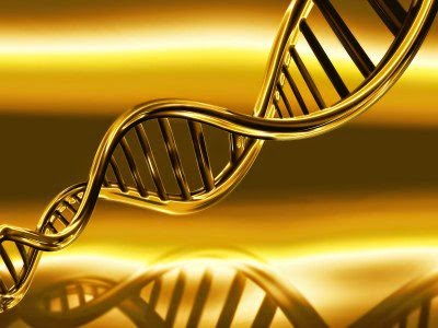 What is DNA Activations ?