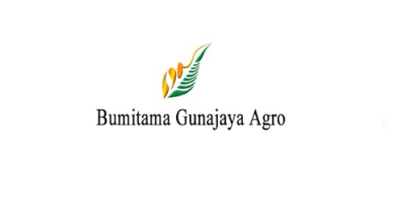 Lowongan Kerja Management Trainee PT Bumitama Gunajaya Agro Juli 2021