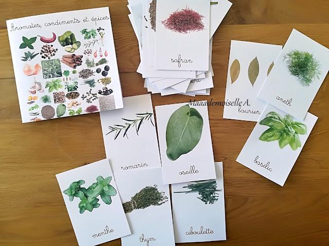 Cartes de nomenclature Aromates, condiments et épices, Maaademoiselle A. Shop