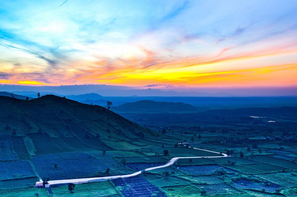 Những thảm dã quỳ khoe sắc vàng trên núi lửa Chư Đăng Ya hùng vĩ