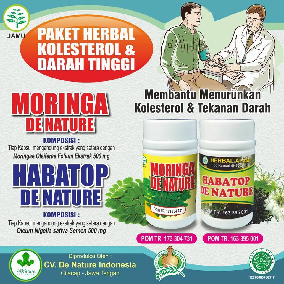 Khasiat Obat Moringa dan Hebatop Herbal de Nature