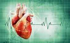 Obat Jantung Berdebar Debar