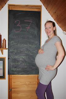 Bauchbild 37. Schwangerschaftswoche