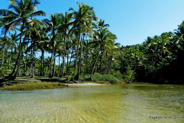 Riacho que deságua na Praia de São José, em Itacaré, Bahia