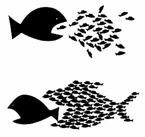 individualismo colectivo