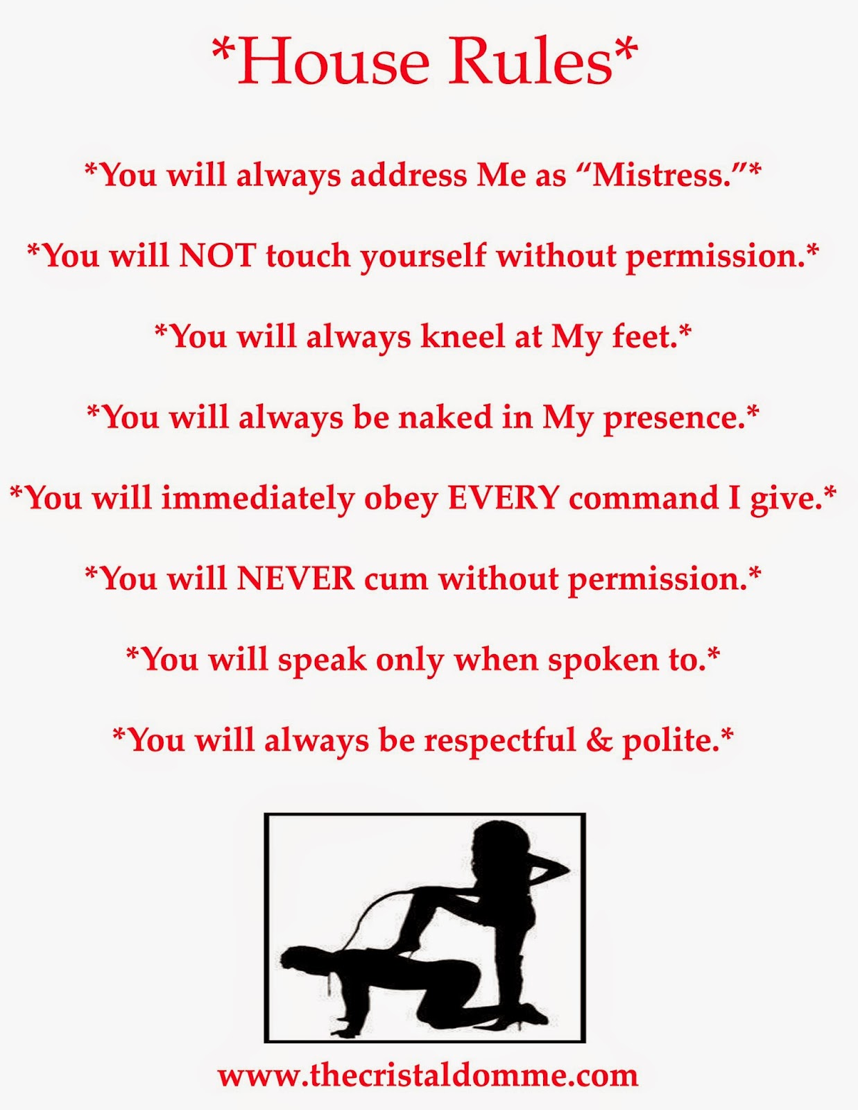 Femdom Slave Rules