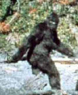 Patterson Gimlin Film famous frame