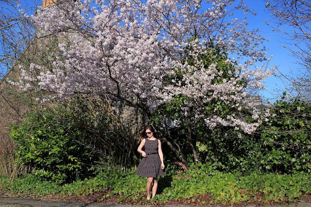 Dress Polka Dot Travel Blog Iga Berry