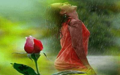 Kumpulan Puisi Tentang Mawar Berduri