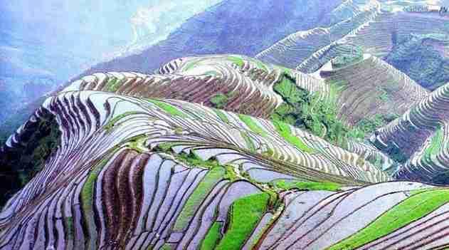 Diario Territorio Y Desarrollo China Las Asombrosas