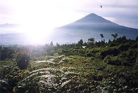 http://traveling-toindonesia.blogspot.co.id/2016/03/tourism-and-travel-in-garut.html