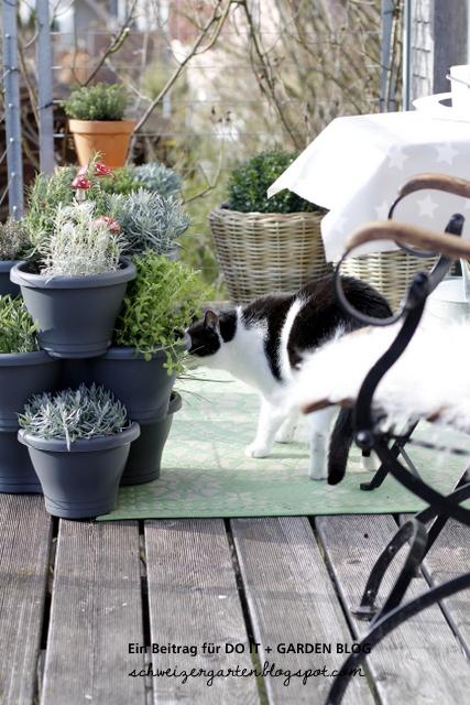 Kräuter Balkon Pflanzen Schönsten Einrichtungsideen