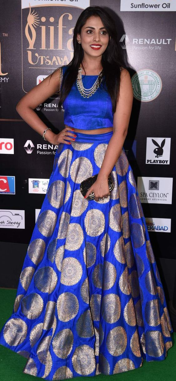 Madhu Shalini Blue Crop Top