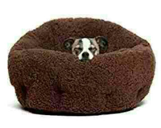 Best Friends by Sheri OrthoComfort Deep Dish Cuddler - Best Dog Bed For Small Dogs.