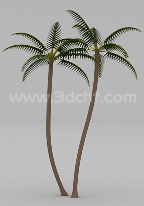 coconut tree 3d model free