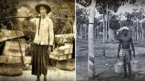 Melayu Bukan Pendatang Ini Sejarah Kedatangan Cina & India Di Tanah Melayu
