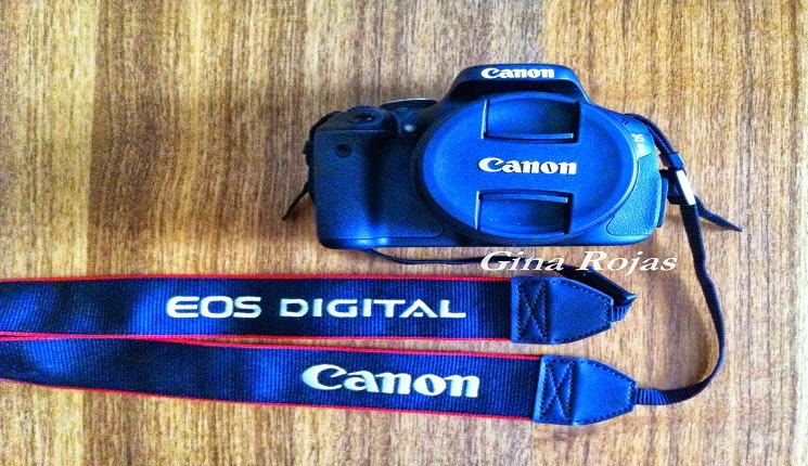 Canon EOS Rebel T3 Digital SLR Camera with EF-S 18-55mm