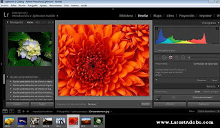 Adobe Photoshop Lightroom Classic CC 2019 Free Download Latest Version for MacOS