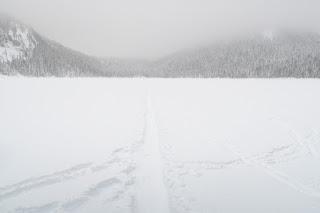 Snowshoe track crossing Lake Helen Mackenzie