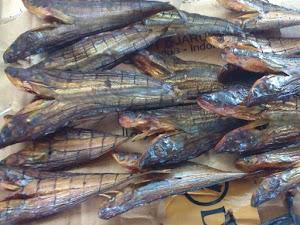 Cara Menjual Ikan Asap Online Kirim Jakarta Medan