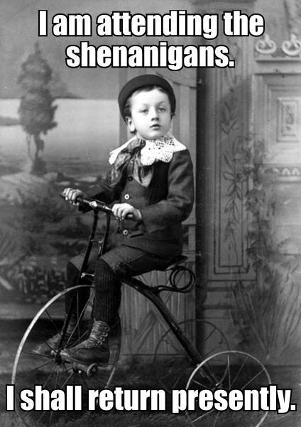 Funny Image Joke  - Shenanigans