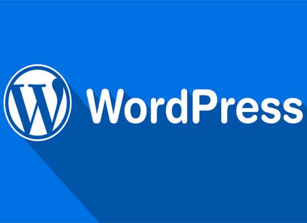 khóa học thiết kế website chuẩn seo với wordpress