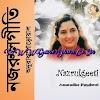 Hits Of Anuradha Paudwal [Nazrul Geeti] by Anuradha Paudwal