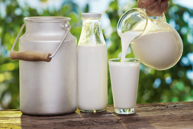 Στερεύει το γάλα στην Ευρώπη – Θα το πληρώνουμε χρυσάφι μέχρι τα Χριστούγεννα- Oλα τα βλέμματα στραμμένα στη Νέα Ζηλανδία