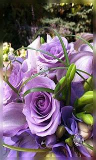 Flores rosas color lila fondos wallpaper para teléfono móvil resolución 480x800