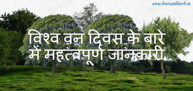 Important information about World Forest Day