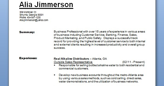 Business Professional Resume Format In Word Free Download